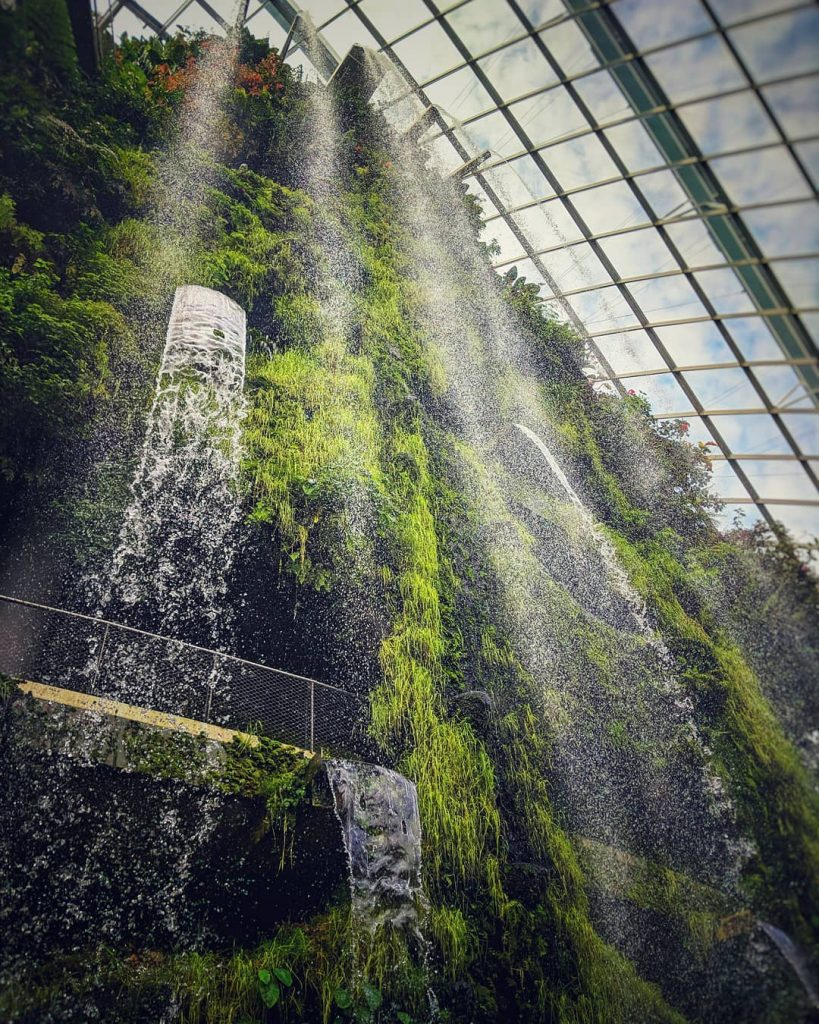 Cloud Forest Gardens by the Bay Singapore Gardens by the bay price. Gardens by the bay opening hours