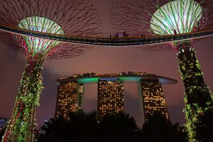 One day tour Singapore. Singapore City Tour. Gardens Bay the Bay Singapore in the Night.